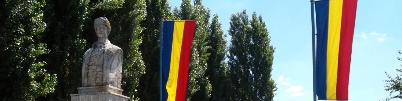 """Școala Gimnazială """"Avram Iancu"""" – Arad"""